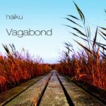 Vagabond_haiku_forside_cover_900