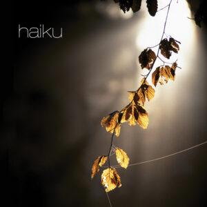 Haiku_cover