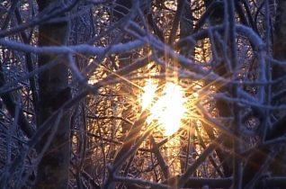 Glimpses by The Haiku Project video by Ireneusz Cyranek