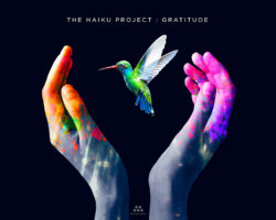 """""""Gratitude"""" is exciting, authentic, ambient electronic music that beautifully and passionately expresses all there is to be grateful for in life. Rich, multi-dimensional, and very well done! –"""
