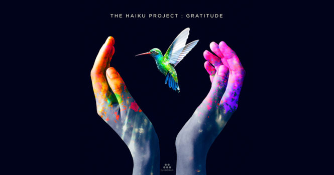 The Haiku Project: Gratitude